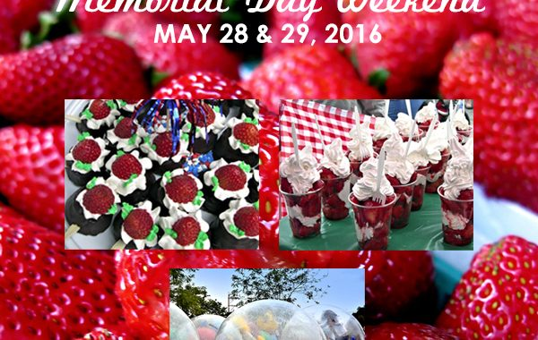 Strawberry Festival 2015 - Madison, CT - Fairs and Festivals ...