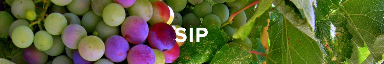 SIP | Things to do in Arroyo Grande, Activities, Tourism | Visit Arroyo Grande<