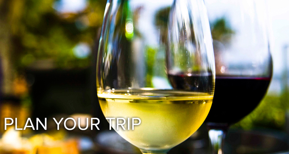 Plan-Wine-Tour